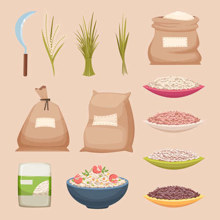 Rice grained. Storage sacks rice products grained agricultural food vector illustrations in cartoon style. Rice product, food storage grain in bag burlap