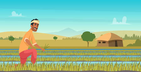 Indian agriculture working. Farmer harvesting in field asia vector background in cartoon style.