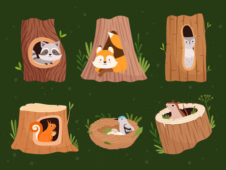 Animals hollow. Wood forest trees with holes for wild animals houses vector cartoon collection. Wildlife raccoon and squirrel, bird nest home illustration  イラスト・ベクター素材
