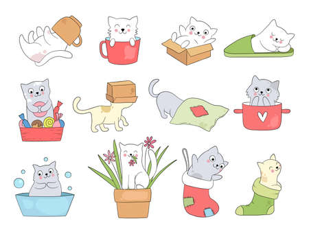 Cute kitty. Funny cats in cups sleeping playing jumping kitty hide in slippers vector cartoon animal. Kitty and kitten cute, relax or playful illustration