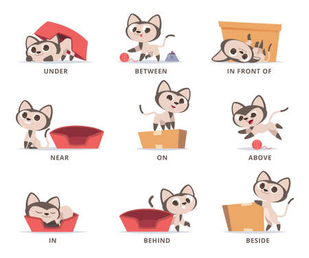 Learning english prepositions. Preschool grammar cute kitty playing with box prepositions on above under near in and on vector set. Illustration english education language, preposition for position