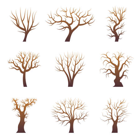 Tree branch silhouettes. Abstract forest trees without leaves natural plants vector set. Illustration forest branch tree, nature stylized wood trunk