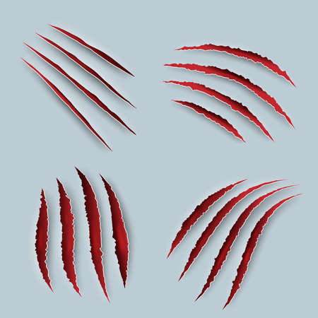 Claw. Scary scratches with blood tiger claws decent vector realistic templates. Scratch injury from animals paw, slash laceration illustration