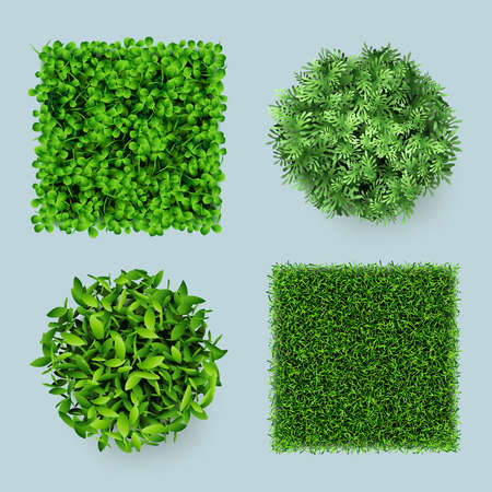 Grass top. Green ground eco gardens forest natural leaves plants decent vector realistic templates. Sample nature garden plant, green grass and leaf illustration Stock Illustratie