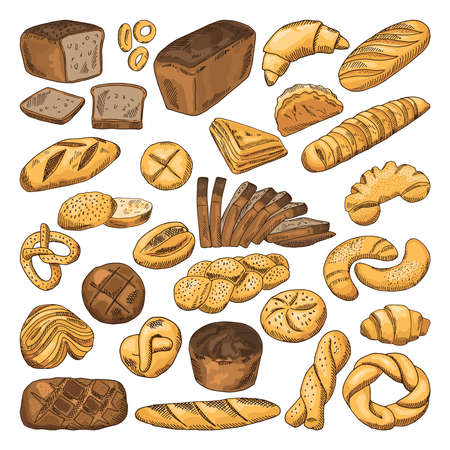 Colored hand drawn pictures of fresh bread and different types of bakery food. Baguette, croissant and others Vetores