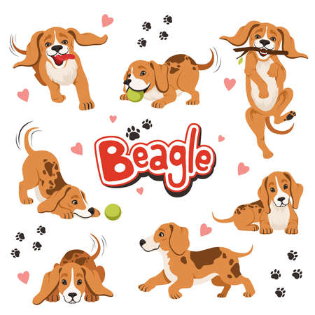 Character of funny movement dog in different dynamic poses. Sitting and shaking pet Vector Illustration