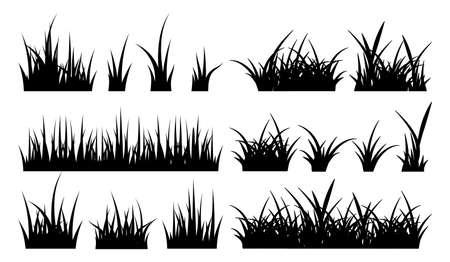 Monochrome illustration of grass. Vector black silhouettes nature grass field