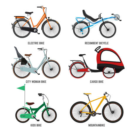 Different type of bicycles for male female and kids. Bikes for family. Vector illustrations kids bike and mountain bike isolate on white