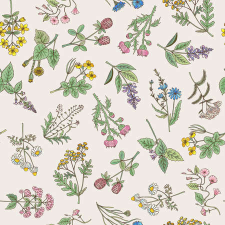 Seamless pattern of various hand drawn herbs and flowers on a gentle pink background. Vector illustration Vektorgrafik