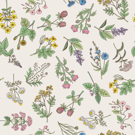 Seamless pattern of various hand drawn herbs and flowers on a gentle pink background. Vector illustration Vektoros illusztráció