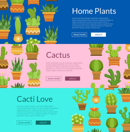 Banner set with home plant cacti. Collection of poster, vector illustration