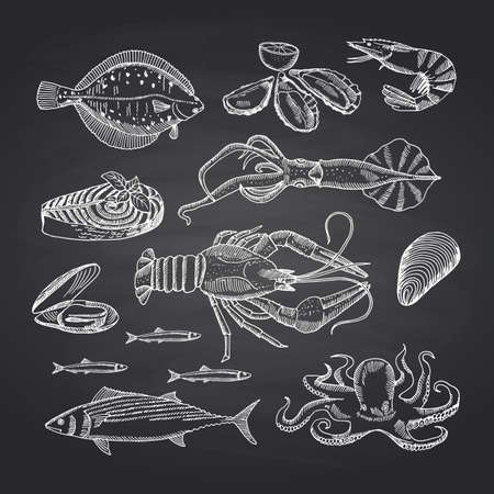 Vector hand drawn seafood elements on black chalkboard set. Illustration of seafood sketch, oyster and shrimp, crab and lobster