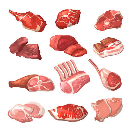 Lamb, pork beef, and other meat pictures in cartoon style. Steak of beef, raw pork meat. Vector illustration