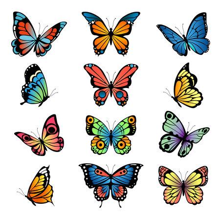 Various cartoon butterflies. Set vector illustrations of butterflies