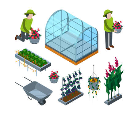 Farm greenhouse isometric. Agricultural wheelbarrow glasshouses for tomato horticulture concept vector 3d pictures Vector Illustratie