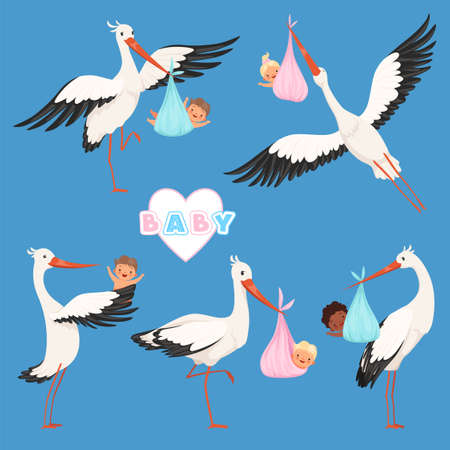 Flying stork baby. Bird delivery newborn cute little childrens vector carry stork characters isolated