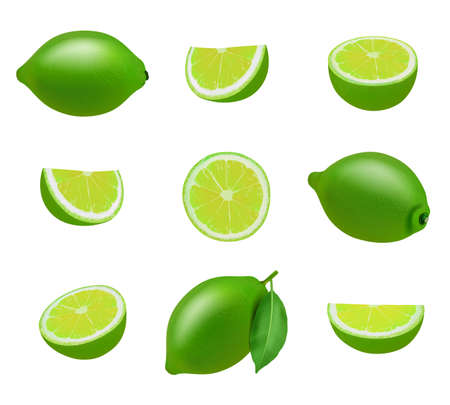 Lime. Realistic fresh sliced fruits with leaves decent vector limes collection Vector Illustratie