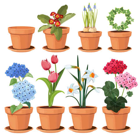 Flowers pot. Decorative colored plants grow at home in funny pots vector cartoon illustrations set isolated. Flowerpot and houseplant, tulip and geranium flower