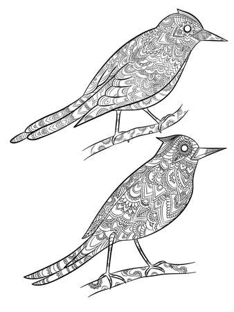 Birds coloring pages. Flying wild canary with linear floral pattern on their body vector cartoon illustrations. Canary mascot contour, songbird with plumage