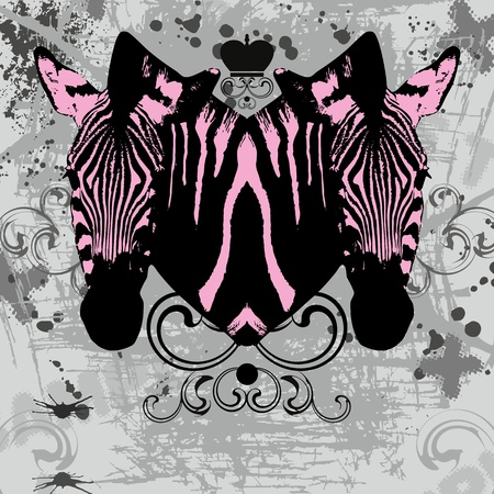 Stylish cd cover with pink zebras head