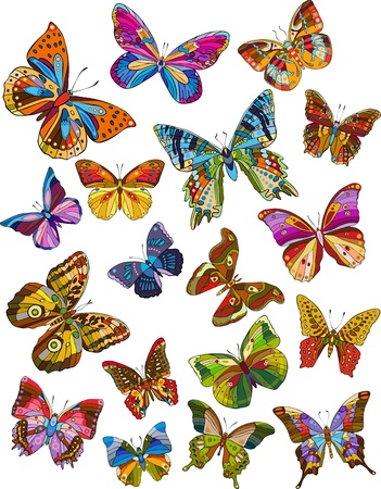 Set of beautiful multicolored butterflies on a white background Stock Vector - 12942990