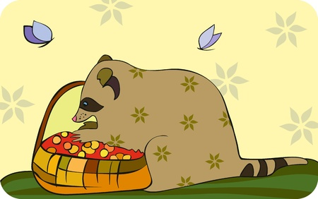 lug:  little raccoon pick berries in basket on a glade  Illustration