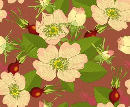 rosa: Seamless background with flowers and rosehip on red-brown background.