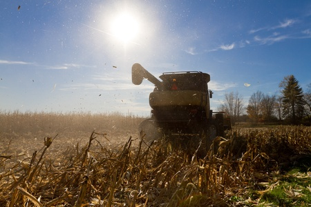agriculture industrial: Taking harvesting corn machine raises your allergies, period. Stock Photo