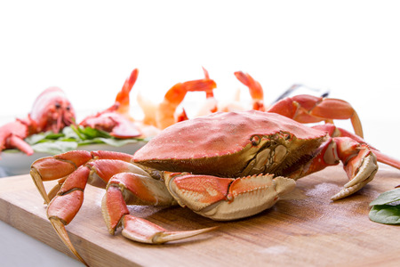Prepearing dungenesscrab, red lobster and shrimps in the kitchen on the cutting board, copy space at the top Stock Photo