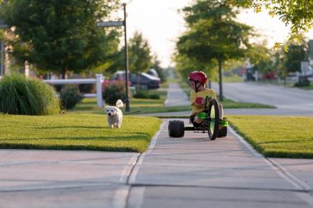 자신의 지역에서 잘 잘라 잔디에 그의 세발 자전거에 개를 산책하는 젊은 소년 스톡 콘텐츠
