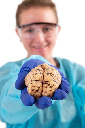 pathologist: Female pathologist or medical technologist holding a brain in her hand extended towards the camera, isolated on white