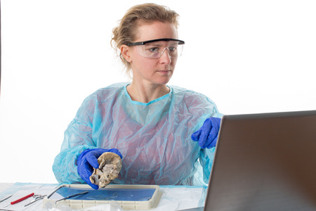Attractive female medical student in anatomy class holding a preserved sheep heart which she is analysing as she looks up information on her laptop computer