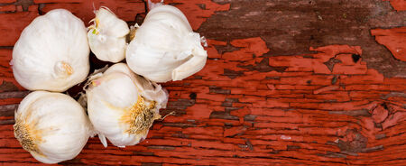 potherb: Fresh whole cloves of farm fresh garlic in a wide banner format lying on a grungy wooden rustic board with cracked peeling red paint and plenty of copyspace Stock Photo