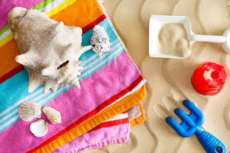 mementos: Collecting seashells on a summer vacation with a large conch and assorted smaller shells on a colorful beach towel with kids plastic toys on golden beach sand