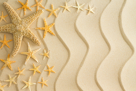 Scattered dried starfish in different sizes arranged to the left side on golden beach sand with decorative wavy lines in a nautical themed background photo