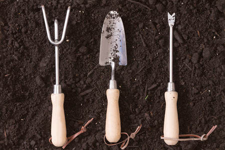 implements: Set of small wood and steel garden implements arranged in a neat row on a background of rich brown earth ready for transplanting seedlings in the spring with a rake, trowel and probe or small augur
