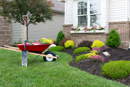 新鮮な春の植物と、家の周りケイトウ花園を植えながら花壇横のきちんとした手入れの行き届いた緑の芝生の上に手押し車立って