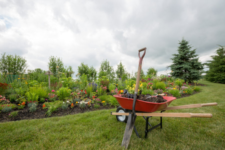 Red wheelbarrow with shovel driven into the ground in the garden
