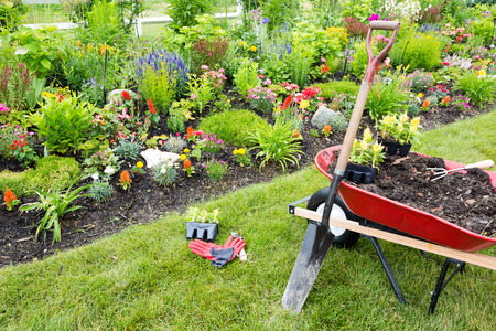 manure: Gardening equipment ready for use in a garden with beautiful plants and flowers
