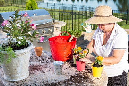 Active senior woman, wearing straw hat and summer casual clothes, while potting ornamental yellow small flowers, as a recreational activity, outdoors, in the garden, at the edge of a lake