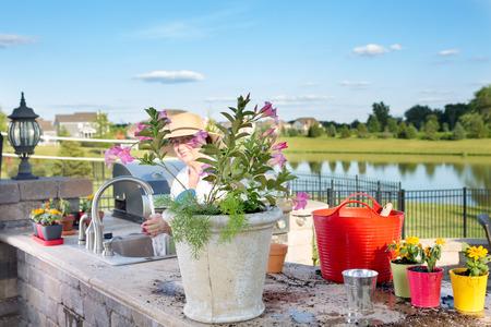 jardineras: Se�ora mayor que tiende a sus plantas de interior con flores ornamentales de pie en el fregadero de su cocina de verano en un patio al aire libre de riego y trasplante en los plantadores grandes
