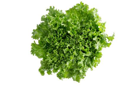 新鮮なシャキッとした緑豊かな緑のカリフォルニア レタスのヘルシー サラダ成分と付け合わせとして使用される上から見た白で隔離されるヘッド 写真素材