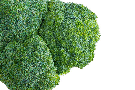 unopened: Isolated head of farm fresh broccoli with young unopened buds or florets for a healthy cooking ingredient over an off white colored background viewed from above