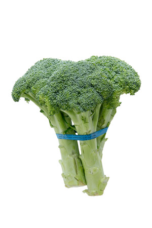 unopened: Side view of fresh broccoli showing the edible stalks and fresh green healthy unopened florets or buds tied in a bundle isolated on white Stock Photo
