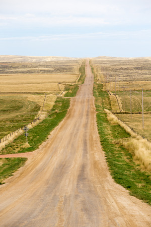 undulating: Long straight deserted dirt road in North Carolina, America disappearing into the distance of gently rolling undulating hilly terrain of the flat open plains Stock Photo