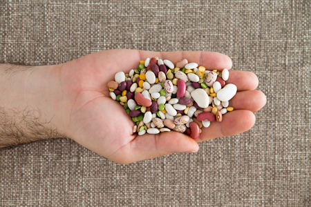 garbanzo bean: Man holding 15 assorted mixed beans and legumes in his hand including kidney, lima, black-eyed, yellow eye, garbanzo and pinto beans, lentils, split peas, overhead view Stock Photo