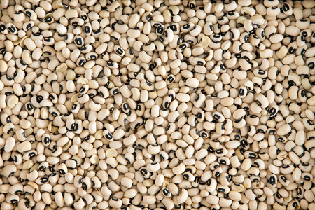 enrich: Background texture of dried black-eyed peas or beans, Vigna unguiculata, or cowpea, with a spoonful in a wooden spoon, grown as a staple nutritional crop, as animal fodder and to enrich soil