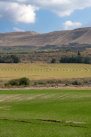 land use: Farmland with irrigated fields and crops with a center pivot irrigated field at the foot of a rolling mountain range showing the curved planting system Stock Photo