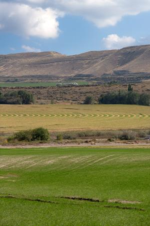 land use: Terreni agricoli con campi irrigati e colture con un campo irrigato perno centrale, ai piedi di una catena montuosa di rotolamento che mostra il sistema di impianto curvo