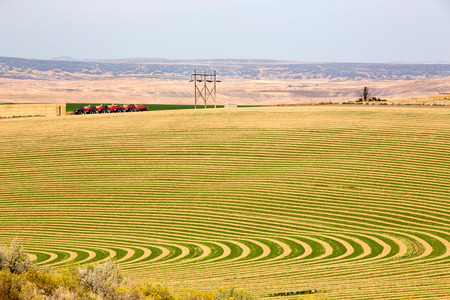 irrigated: Farmland with contoured planting for pivot irrigation showing the alternating curved pattern allowing for the rotation of the wheeled sprinkler trusses Stock Photo